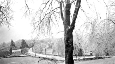 Looking down High Ridge Road from Elbert Jones' house