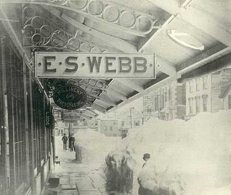 Store of E.S. Webb, 94 Atlantic Street, dry goods and gents' furnishing goods