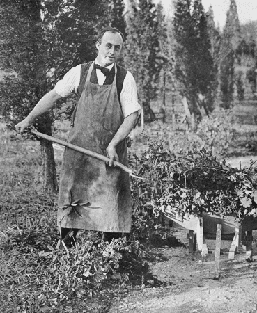 Fred McDermant gardeining in North Stamford