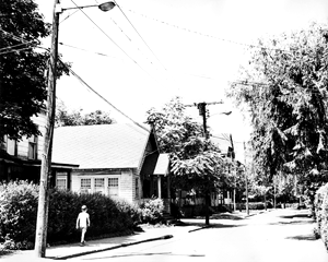Willow Street View